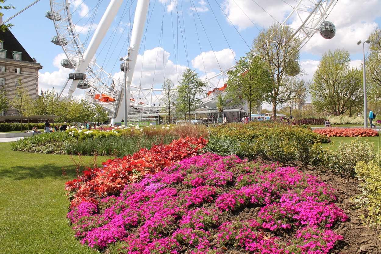 Jubilee Gardens Trust